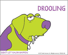 Help for your dog suffering from motion sickness. Drooling is a symptom!